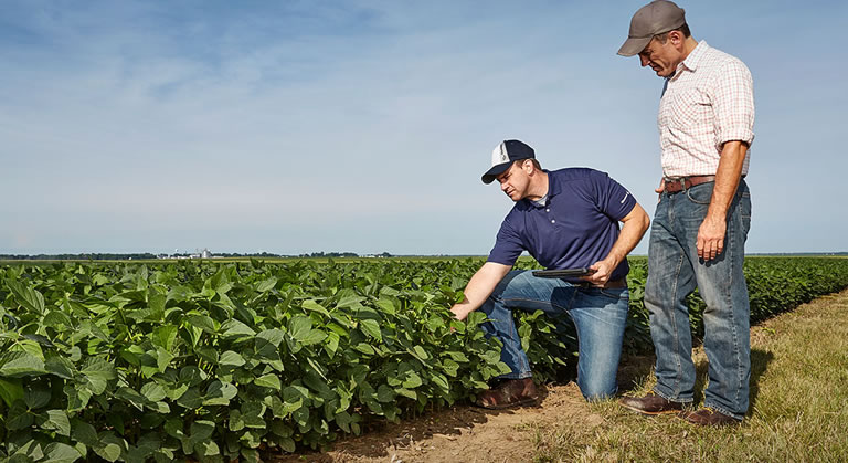 Solution to streamline on-field executives visit to Dealers/Farmers, to improve repeat orders by nearly 90%.
